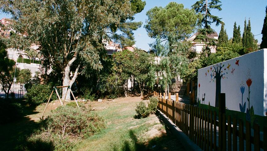 blossom-jardi